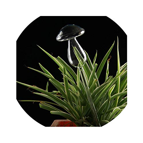 (dream-higher 6 Types House Plants Flowers Water Feeder Automatic Self Watering Devices Clear Glass Water Feeder Bird Shape Vases,3)
