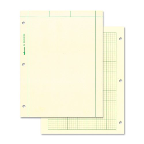 National Brand Computation Pad, Plain on Front Side / 5 X 5 Quad on Back Side, 8.5 x 11 Inches, Green Paper, 100 Sheets (42382) 2 Side Quadrille Pads