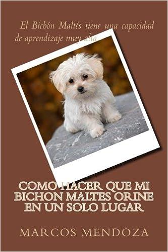 Como Hacer que Mi Bichon Maltes Orine en un Solo Lugar (Spanish Edition): Marcos Mendoza: 9781986555937: Amazon.com: Books