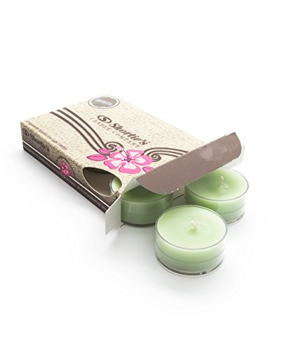 Mistletoe Moments Tealight Candles - Highly Scented with Natural Oils - 6 Green Hand Poured Tea Lights - Clear Container for Beautiful Candlelight - Christmas & Holiday Collection