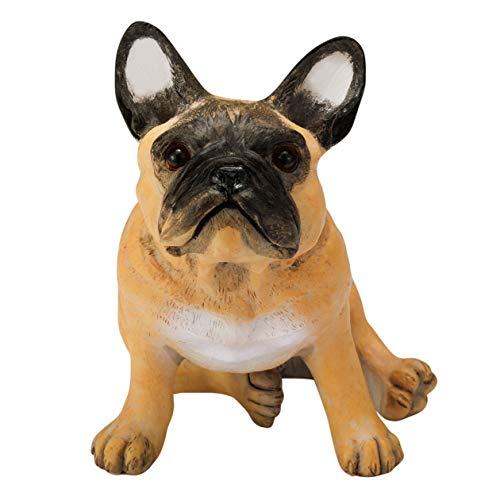 french bulldog fawn - 2