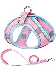 Cat Harness and Leash Set for Walking Caseeto Adjustable Pet Vest Harness Outdoor Cat Jacket Breathable Escape Proof