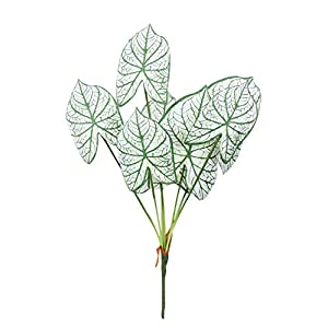 Duovlo 7 Branches 25.5 Inch Artificial Tropical Monstera Palm Tree Leaves Plants for Hawaiian Safari Party Jungle Beach Party Wedding Decorations,Pack of 1 (Alocasia Macrorrhiza White) 62