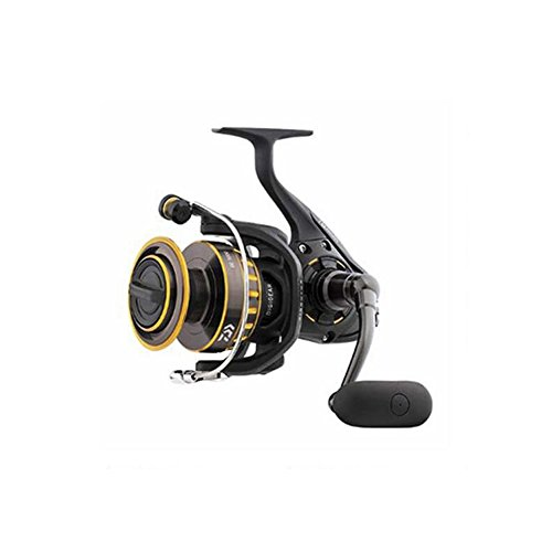 Daiwa BG6500 BG Saltwater Spinning Reel, 6500, 5.3: 1 Gear Ratio, 6+1 Bearings, 48.7