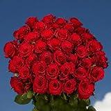 GlobalRose 50 Red Roses - Fresh Cut Long Stems - Flowers For Birthdays, Weddings or Anniversary.