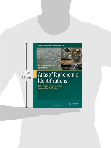 Atlas of Taphonomic Identifications: 1001+ Images of Fossil and Recent Mammal Bone Modification (Vertebrate Paleobiology and Paleoanthropology)