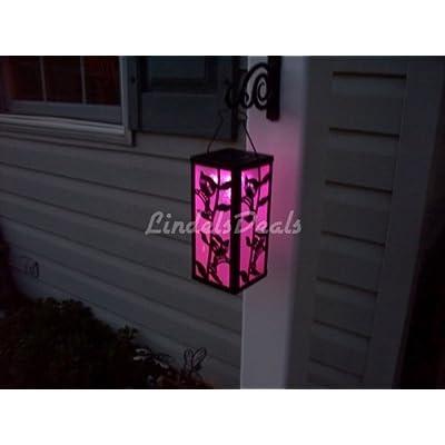 Outdoor Garden Hummingbird Lantern Color Changing/White Solar Light: Home & Kitchen