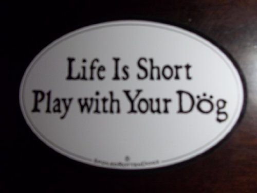 Oval Pet Carrier - Pet Car Magnet - LIFE IS SHORT PLAY WITH YOUR DOG