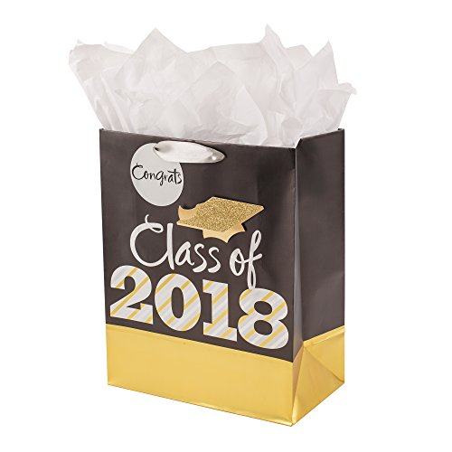Hallmark Large Graduation Gift Bag With Tissue Paper and Gift Tag (Black and Gold Class of 2018) -