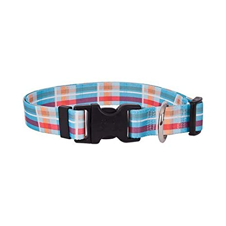 Size Cat 8 to 12 Long Red Flames Dog Collar Made In The USA