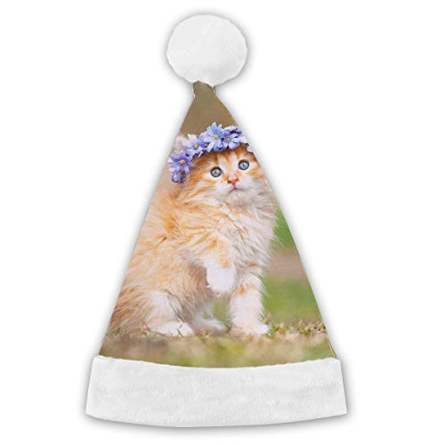 Holiday Christmas Halloween Santa Hat Maine-Coon-kitten Festive Holiday Party Hat With White Cuffs For Kids