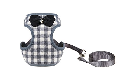 Small Dog Harness Leash Set product image
