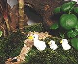 Mini Duck and Ducklings for Mini Fairy Garden (3pcs)