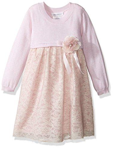 - Bonnie Jean Little Girls' Toddler Sweater Empire Dress, Pink, 3T