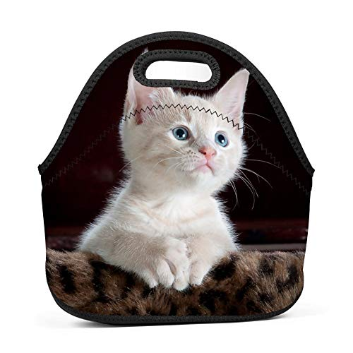 Cute Animal Cat Waterproof Tote Bag Lunch Bag for Students, Kids and Adults ()