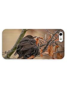 3d Full Wrap Case For Iphone 5/5S Cover Animal Freezing Bird