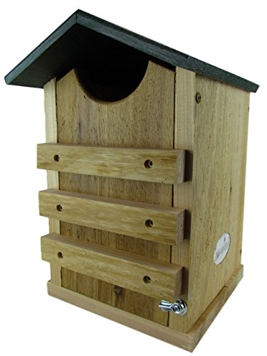 (JCs Wildlife Screech Owl or Saw-Whet Owl House Cedar Nesting Box with Poly Lumber Roof)