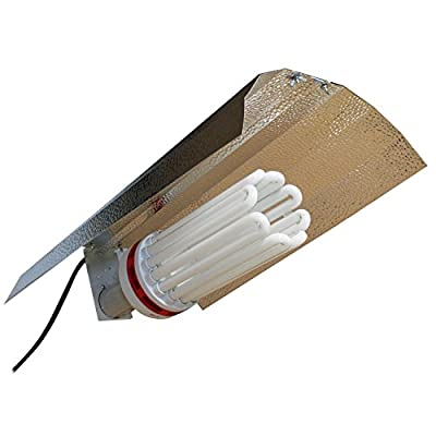 SPL Horticulture 250 Watt CFL Compact Fluorescent Grow Light Bulb System of 2700k for Plant Growing