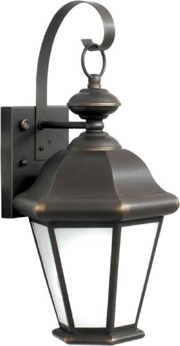 Forte Lighting 10006-01-14 Exterior Wall Light with Frosted Seeded Glass Shades, Royal (Energy Star Forte Lighting)