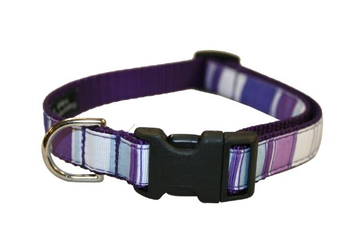 Sassy Dog Wear 13-20-Inch Purple/Multi Stripe Dog Collar, Medium, My Pet Supplies