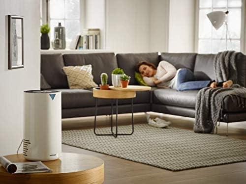 Soehnle Airfresh Clean 300 Purificador de aire para hogar, filtro de aire que protege de alérgenos, eficaz limpiador de aire adecuado para alérgicos: Amazon.es: Hogar