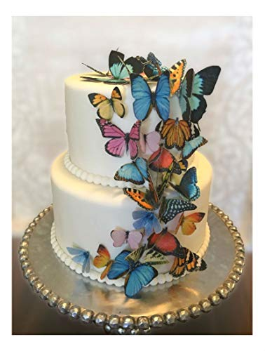 Butterfly Double Sided Paper - Edible Butterflies, 3-D Double-Sided, Wafer Paper Cake and Cupcake Decorations