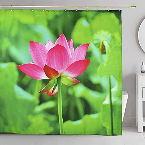 Water Lily Leaf - FamyFirst Shower Curtain High Definition Clear Printing Thick Fabric Bathroom Decorative Magnets Waterproof 72 x 72 Inches Long Red Pink Floral Lotus Flower Blossom Green Leaf Water Lily