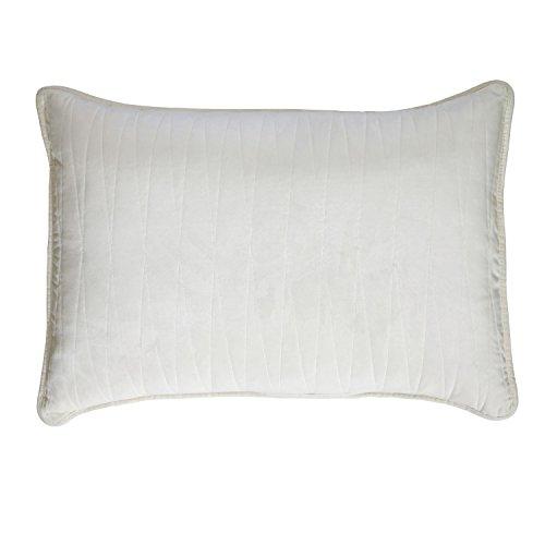 Brielle Premium Heavy Velvet Sham Set with Cotton Backing, Standard, Off White