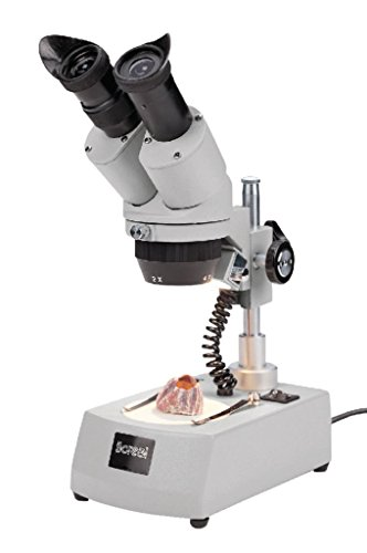 5572802 - Stereo Microscope Binocular - Boreal Science Student Stereomicroscopes - Each