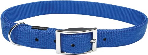 Dogit Nylon Single Ply Dog Collar with Buckle, Small, 12-Inch, Blue