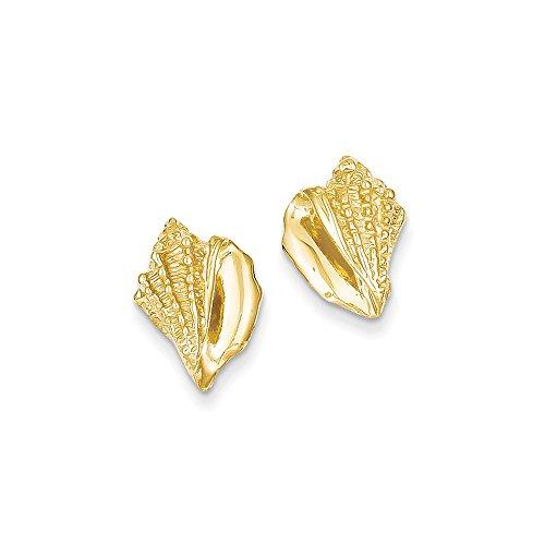 Earrings Conch Gold Shell - 14k Yellow Gold Conch Shell Earrings
