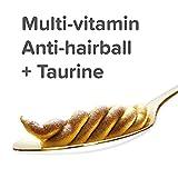 Beaphar Vitamin/malt Paste For Ferrets 100 G