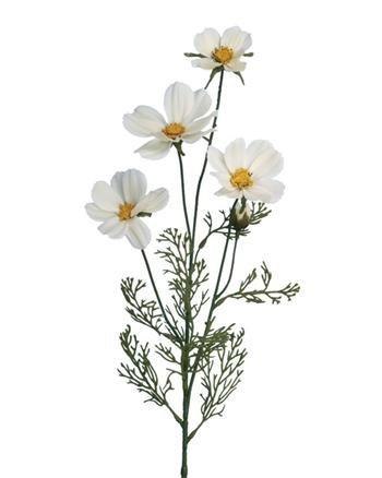 Floralsilk Limited Marguerite Daisy - White