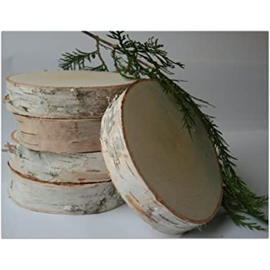 Birch Slices/disks 6'' Dia. 1 1/4'' Thick (Pack of 5)