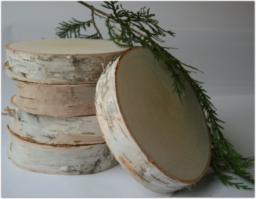 Wilson Enterprises Birch Slices/disks 6 inch Dia. 1 1/4 inch Thick (Pack of 5)