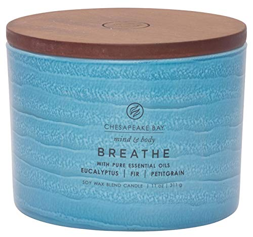 Chesapeake Bay Candle Mind & Body Serenity Scented Candle, Breathe with Pure Essential Oils (Eucalyptus, Fir, Petitgrain), Coffee Table