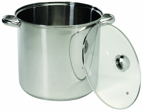 Base Encapsulated (ExcelSteel 551 Stockpot with Encapsulated Base, 20 quarts, Silver)