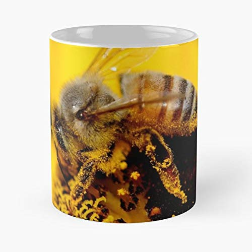 Bee Honey Insect - Funny Sophisticated Design Great Gifts -11 Oz Coffee Mug.the Best Gift For Holidays.