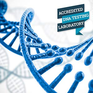 Home Paternity DNA Test Kit | Lab Fees Included | Results in 1-2 Business Days | No Cost to Return Samples | Simple, Accurate | Confidential Results in The Privacy of Your Home by HomePaternity (Image #6)