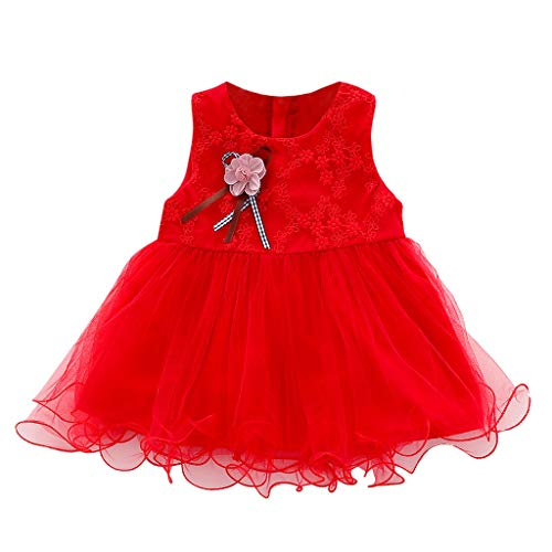 Sunhusing Baby Sleeveless Round Neck Flower Embroidered Bow Ribbon Embellished Tulle Princess Dress (Ducks Embroidered Leather)