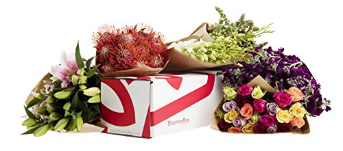 Flowers of the Month Subscription -3 Months by BloomsyBox