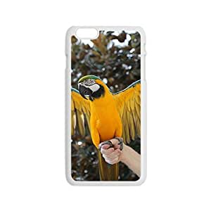 Ready To Fly Parrot Hight Quality Plastic Case for Iphone 6 by icecream design