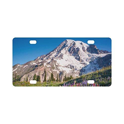 INTERESTPRINT Mt Rainier National Park Wildflowers Summer Time Cascade Mountain Wilderness Metal License Plate Cover