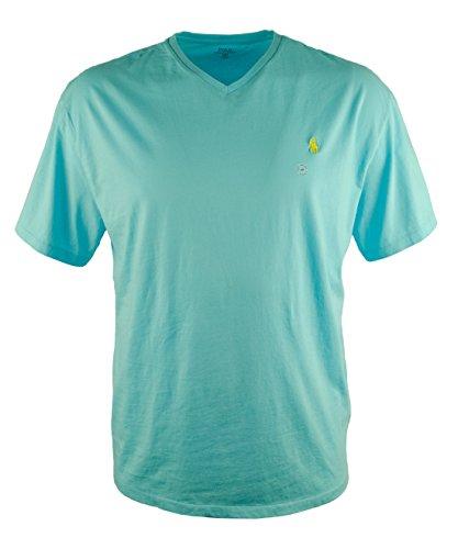 UPC 889043751960, Polo Ralph Lauren Men's Big & Tall V-Neck Short Sleeve T-Shirt -HB-XLT