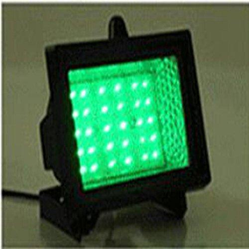 Village Green Solar Lighting in US - 8