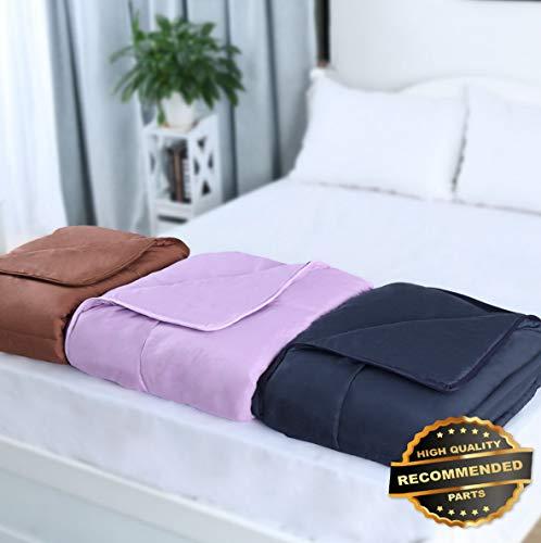 (Ellyly Premium New All-Season Down Alternative Comforter 100% Polyester Reversible Machine Washable | Style CMFTR-120218208 |)