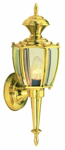 Design House 502526 Jackson 1 Light Indoor/Outdoor Wall Light, Solid Brass by Design House