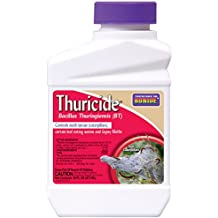 Bonide Products 803 Thuricide BT Insect Killer, 16-Ounce