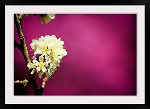 GreatBIGCanvas ''Thai Sakura'' Photographic Print with Black Frame, 36'' x 24'' by greatBIGcanvas