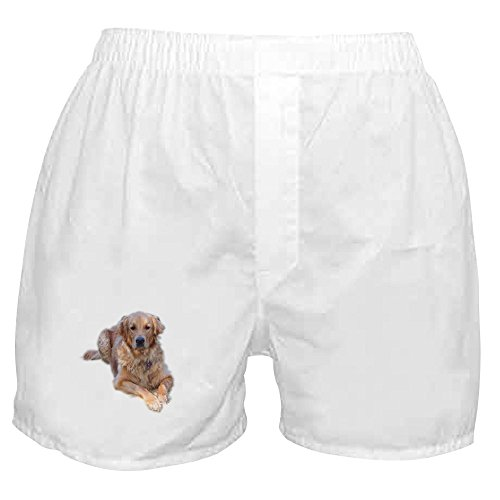 Retriever Mens Shorts - CafePress - Golden Retriever - Novelty Boxer Shorts, Funny Underwear